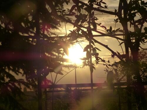 douces soirées d'automne ...