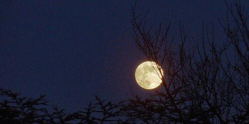 Pleine Lune - Image Le Monde