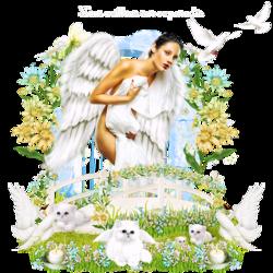 Ange au paradis ailes animées code inclu