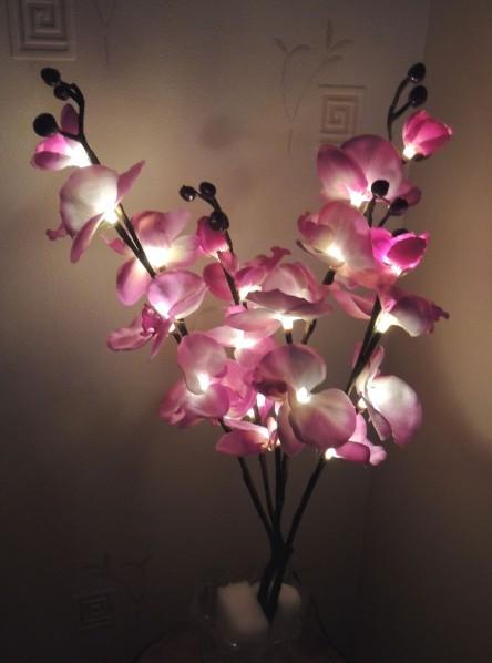 Orchidee-lumi-2.jpg