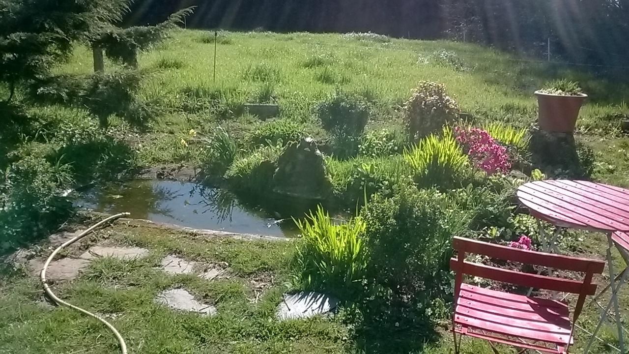 Entretien du jardin et de la maison dans le Finistère
