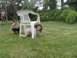 Parcours d'obstacles dans le jardin