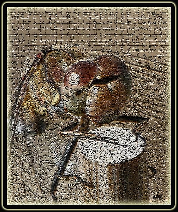 Insecte 03 : libellule
