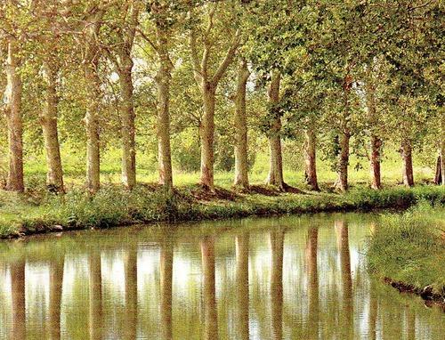 Languedoc-Roussillon et Midi-Pyrénées