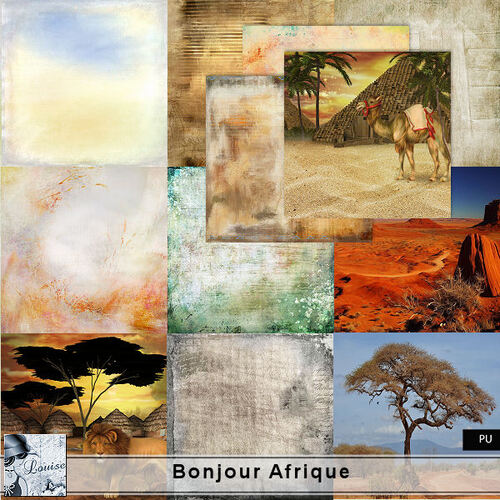 Bonjour Afrique - Page 5 NAL_yiqOQgoyCm0A1S_TOSAGUFU@500x500