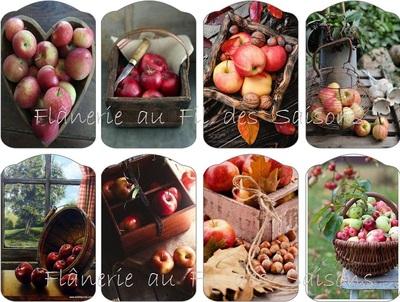 Le temps des pommes ! cartonnettes