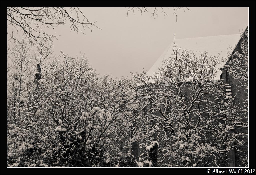 Mon regard sur la neige