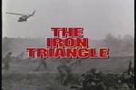 Johnny   Hallyday  :  The   iron  triangle  -  1989
