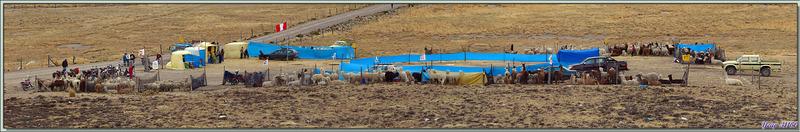En pleine montagne, loin de presque tout, à 4500 m d'altitude, un marché aux lamas et alpagas - Crucero Alto - Pérou