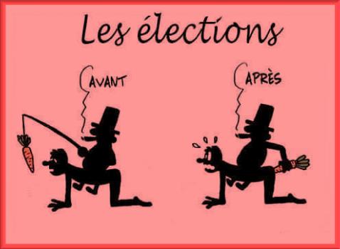 Les élections (Humour)
