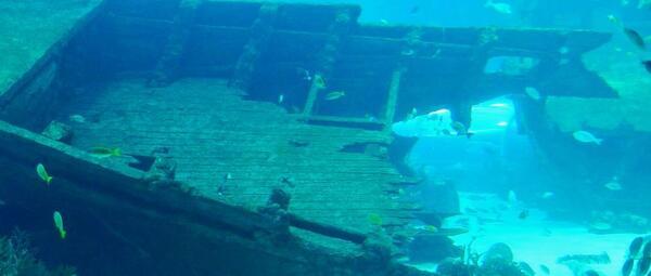 Phénomènes Inexpliqués:  Triangle des Bermudes : le mystère (enfin) résolu ?