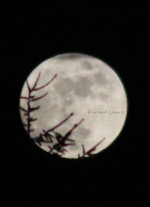 Lune - 23 Janvier 2016