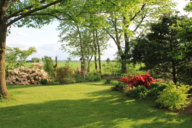 Le jardin est maintenant ouvert ...