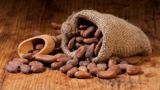 Fèves de cacao séchées