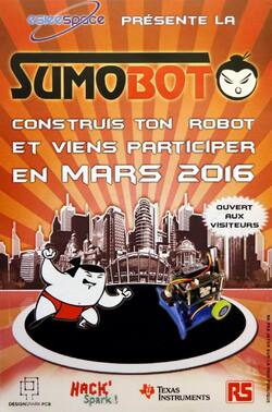 Japan Expo 2015,sumobot 2016,leca philippe,philippe leca