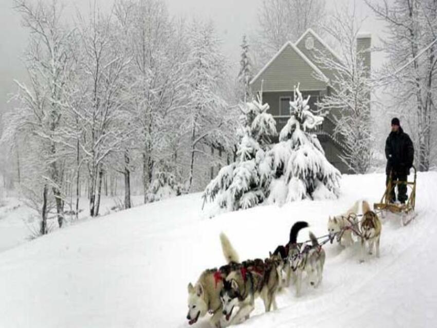 la Laponie je fait partager ces photos magnifiques ,je l'ai trouve superbe dans ce pays ou il fait très froid