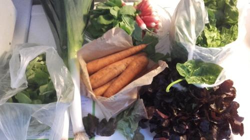 Mes legumes