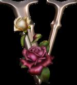 Veules-les-roses .....