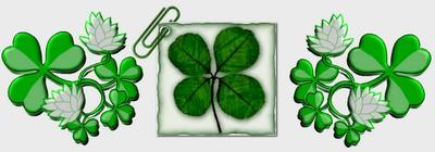"""""""Le trèfle"""" à la St Patrick ! ..."""