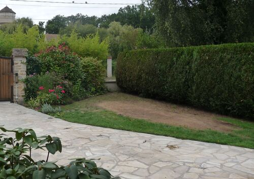 Chambardement au jardin