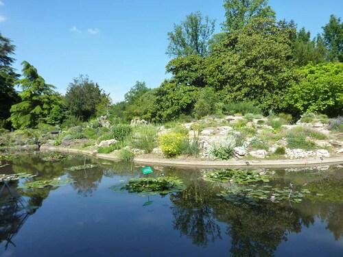 Plantes exotiques du Parc de la Têete d'Or (1)