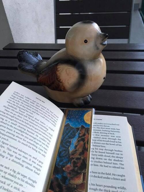 pause lecture, sur le balcon, avec Cui-Cui !