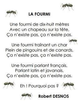 Ferme à fourmis