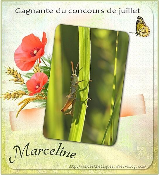 2011-07-30-Scrap-Marceline-Gagnante.jpg