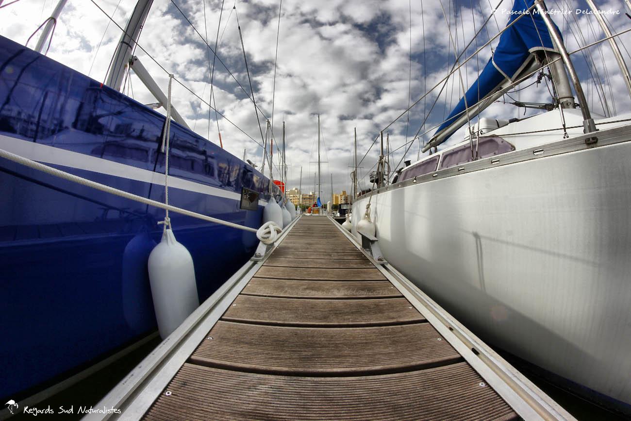 Port de plaisance de Carnon