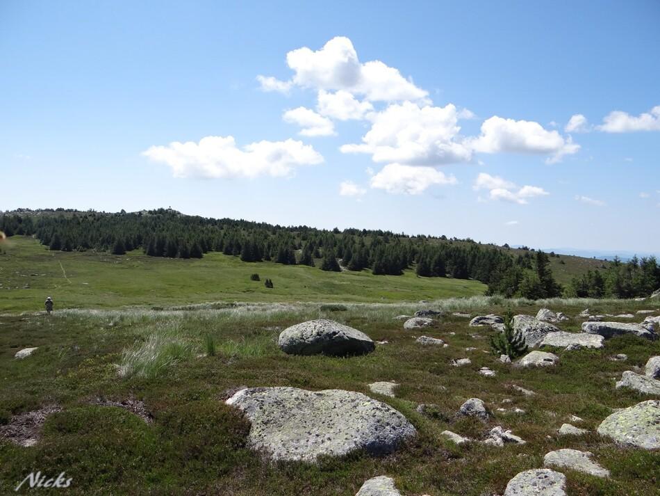Mont LOzère,