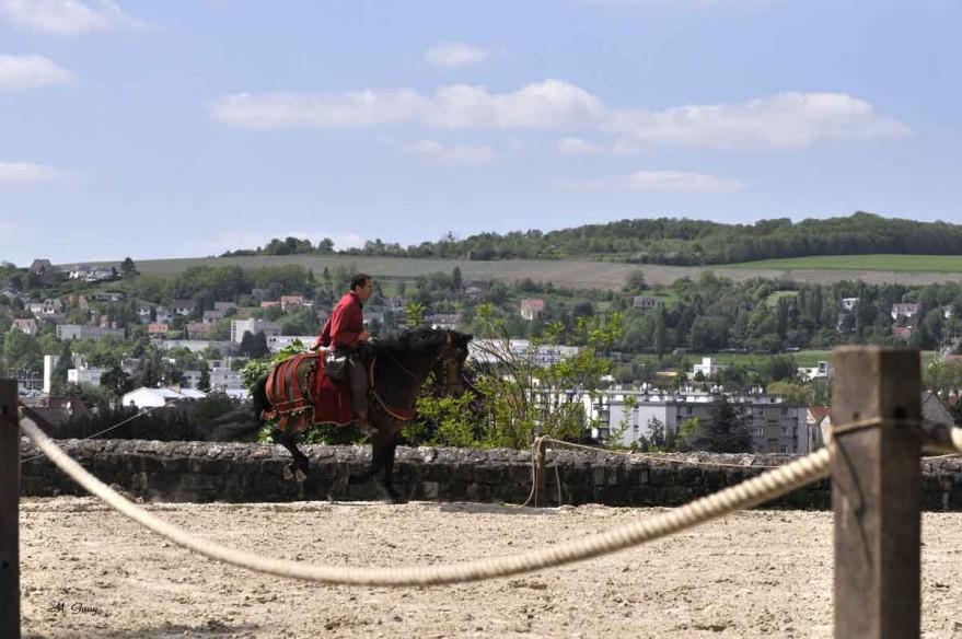 cheval-3858.jpg
