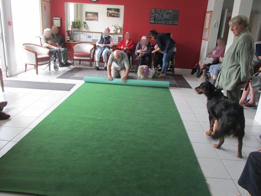 Animation à la maison de retraite de St Georges d'Oléron (20 juin 2016)