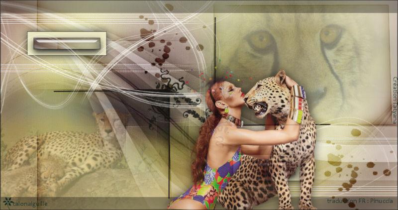 *** Cheetah -***