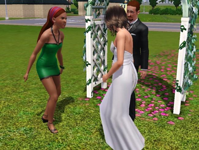 Chapitre 6 : Félicitation aux jeunes marié !