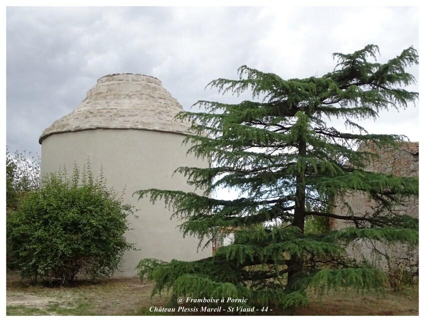 Château du Plessis Mareil - St Viaud - 44 -