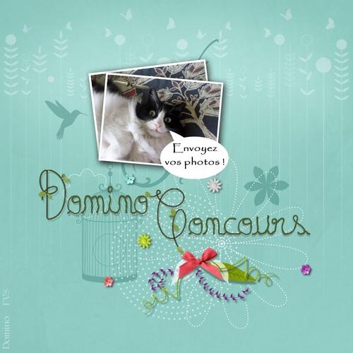 Des nouvelles de Rosette et Domino