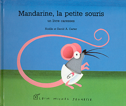 Mandarine la petite souris grise