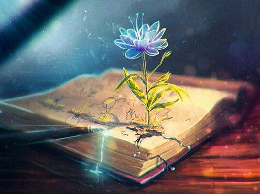 Le Livre de Vie Des Maîtres Ascensionnés