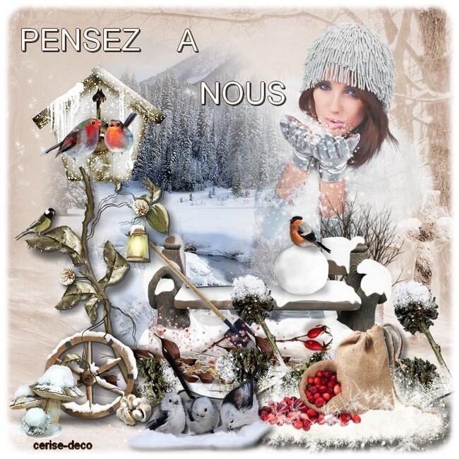 cluster : les oiseaux en hiver