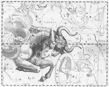 II- Armure du Taureau (Taurus Cloth)
