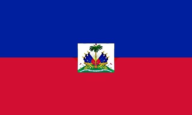 Drapeau de Haïti 28 01 2010