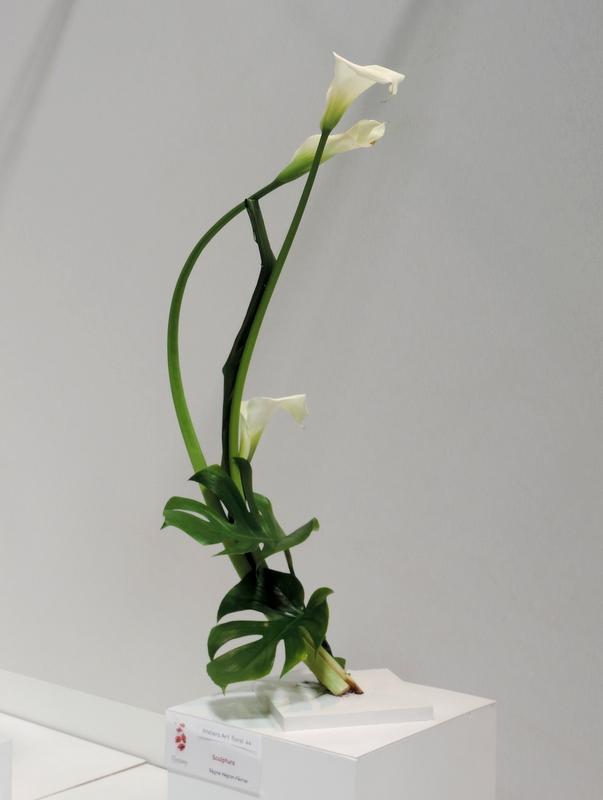 Floralies de Nantes : quelques coups de coeur (SUITE)