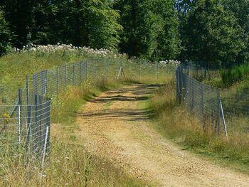 Sur les pas de Vlaminck (circuit rallongé)