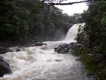 Whakahoro - National Park
