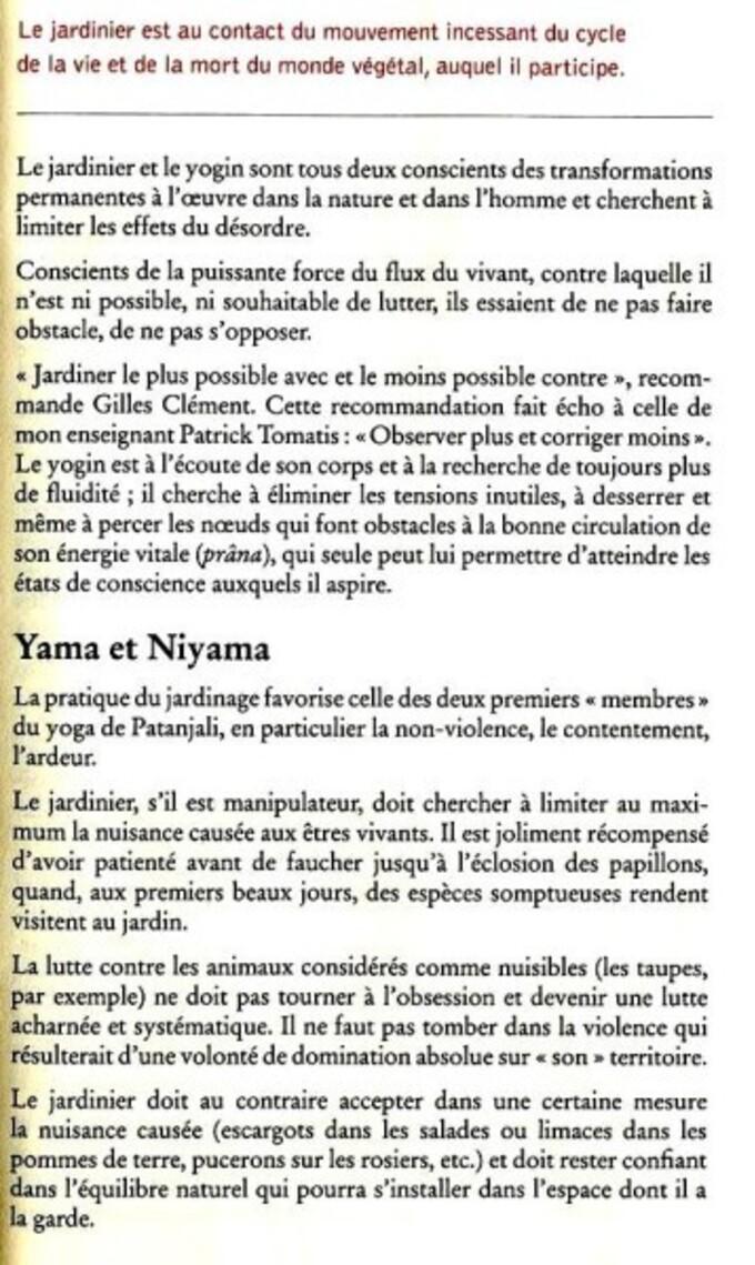 Jardin-et-yoga--4-.jpg