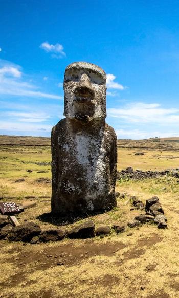la surexploitation des richesses naturelles conduisit l'île au désastre.
