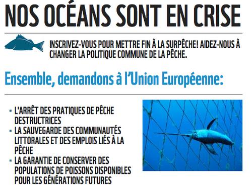 Nos océans sont en crise