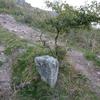 Ancienne borne/stèle dressée avec croix gravée (470 m)