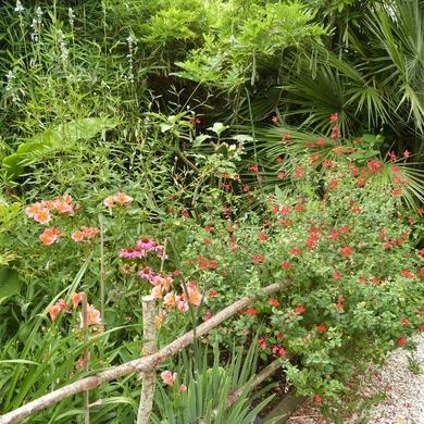 Les jardins de la Boirie...