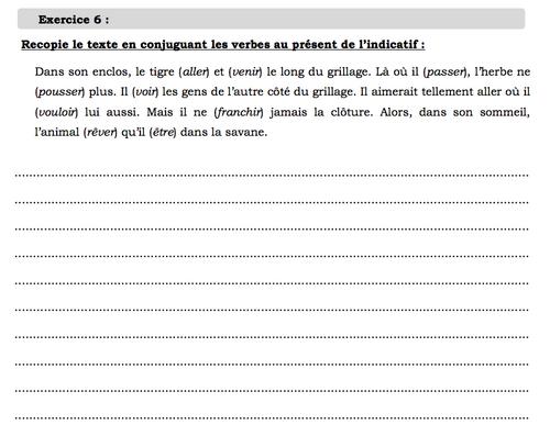 Evaluation grammaire periode 1